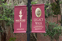 Photo of Florida State torch banners along the Legacy Walk through campus