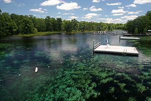 Photo of Wakulla Springs